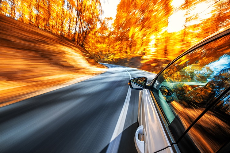Car driving down empty road with trees surrounding it